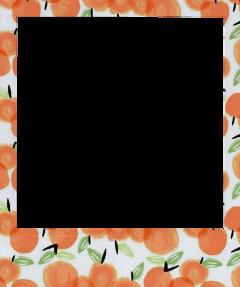 polaroid aesthetic peach orange frame