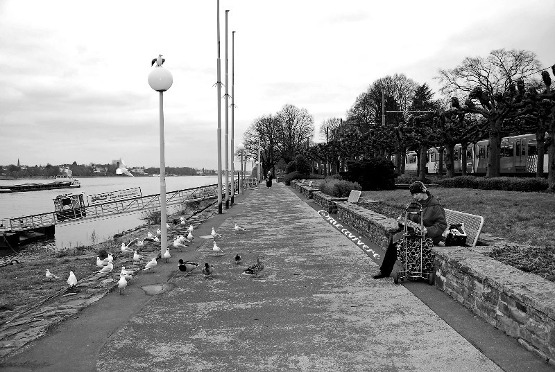 #urban #blackandwhite #photography #travel #bnwphotography #nofilter #unedited  #bnw_life #bnw #people #streetphotography #bnw_street #seagull #streetlife