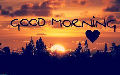 good morning goodmorning myfriends