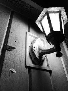 dpcblackandwhite freetoedit lamp moth outdoors