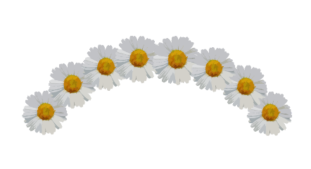 freetoedit ftestickers flowercrown flower flowercrownsticker
