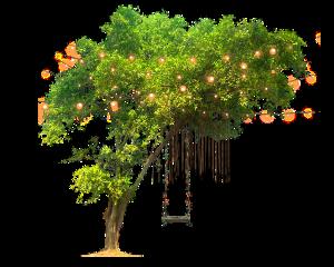 tree freetoedit