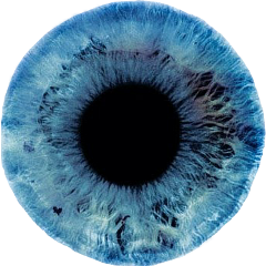iris eye eyes blueeyeres blueiris