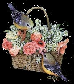 bird ftebaskets flores flowers stickers freetoedit