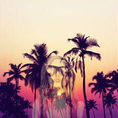 freetoedit palmtrees sunset pretty photography