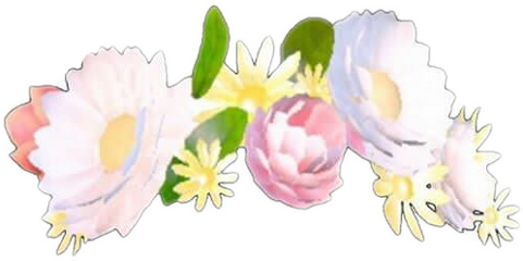 snapchat snapchatfilters dogfilters flowercrowns floral