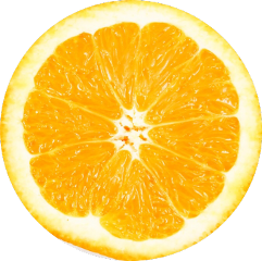 freetoedit ftestickers orange citrus slice
