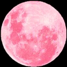 fte ftestickers moon pink freetoedit