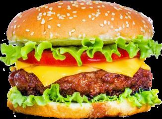 hamburger food eat chesse freetoedit