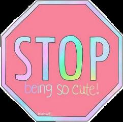 stop tumblr cute stopbeingsocute freetoedit