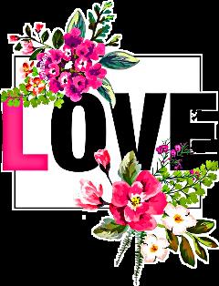 love amour amor flowers tumblr