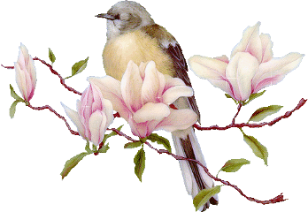 ftestickers flowers bird freetoedit