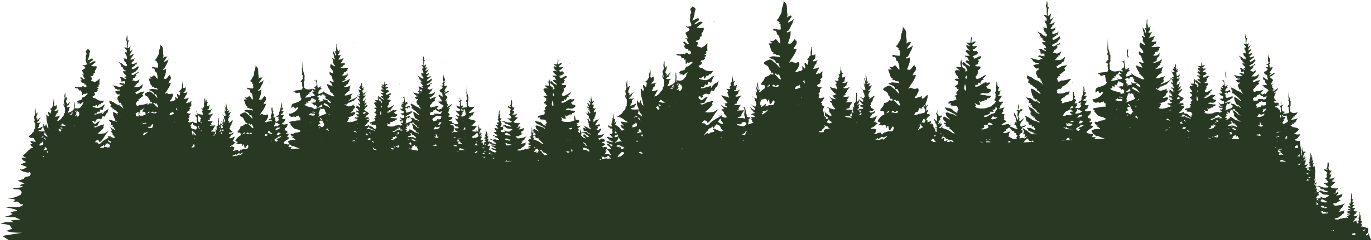 ftestickers pine forest trees freetoedit