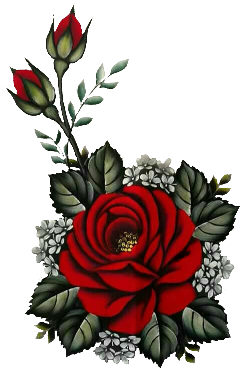 rose rosered flower flor nature ftestickers freetoedit