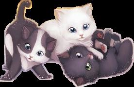 cat animals freetoedit
