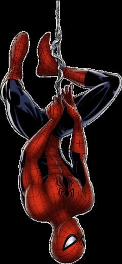 marvel spiderman cartoons movies comics