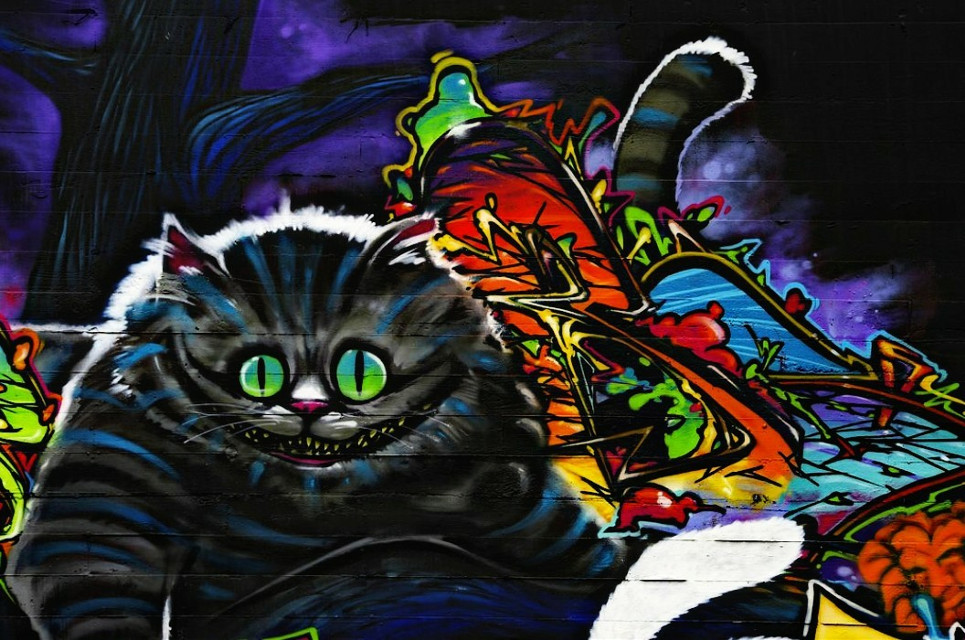 Imagination is the only weapon in the war against reality #chesirecat #grafitti #streetartists #tacoma #washington #streetartphotography