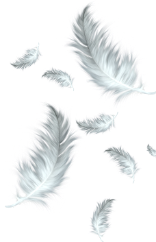ftestickers feathers