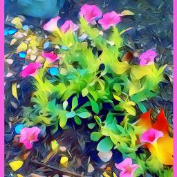 freetoedit flowers brightcolor