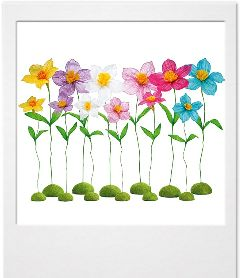 freetoedit flowers colors picsart