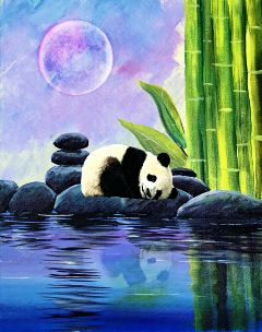 sleepingpanda zen moon curvestool mirroreffect freetoedit