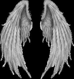 alas angel angels alasdeangel freetoedit