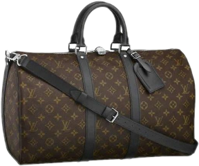 gucci guccibag bag guccipurse purse freetoedit