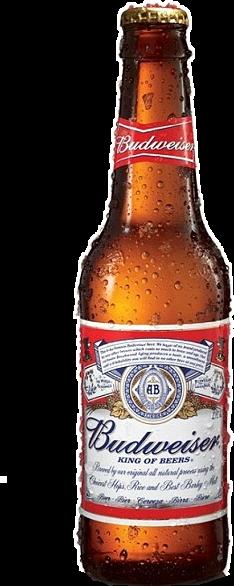 budweiser beer beerbottle freetoedit
