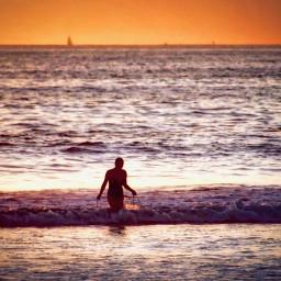 angeleyesimages beaches californiabeaches coronado sandiego freetoedit