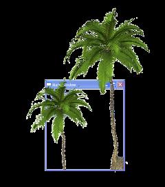 ftestickers vaporwave window palm freetoedit