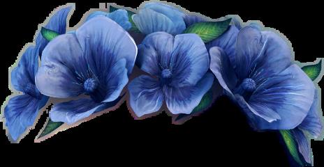 flowers flowercrown blumen blume blumenkranz
