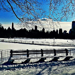 freetoedit pcoutdoorwinter outdoorwinter dpcbenches nyc pcwinterparks pcskyscrapers pctravelscenes