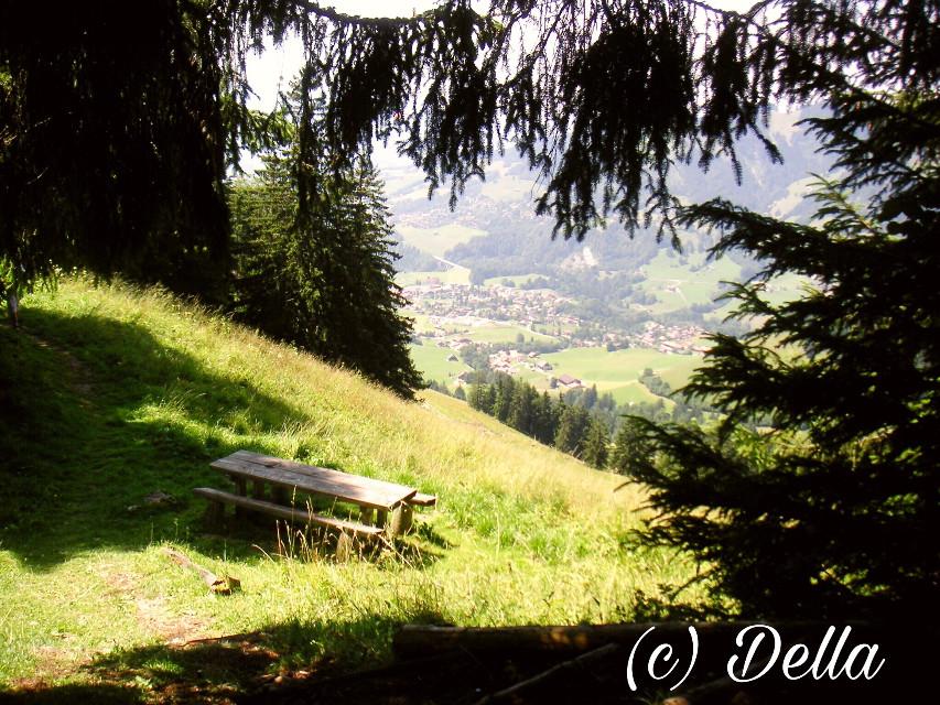 #dpcbenches #dpchike #dpcabandonedplaces #pcbeautifulscenery #beautifulscenery #pclandscapes #landscapes #pcbench