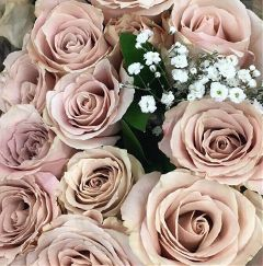 flower roses love freetoedit