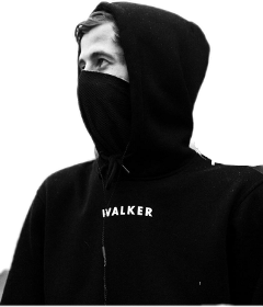 alanwalker freetoedit