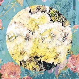 lovethecolors flowers designart shapemask background