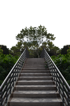 ftestickers stairs freetoedit