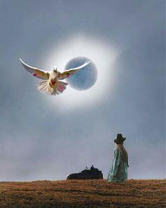 freetoedit solar eclipse