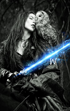 owl horse ride woman sword freetoedit