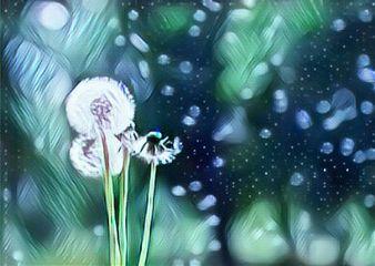 freetoedit whiteicemagiceffect dandelionwishezz make dandelionwishezz