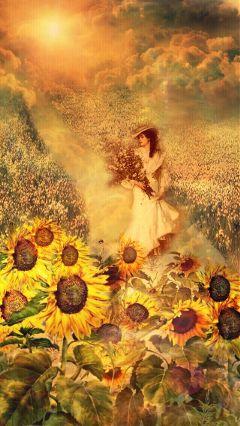 freetoedit sunflowers garden sunlight walk