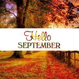 freetoedit helloseptember september september2017 helloseptemberstickerremix