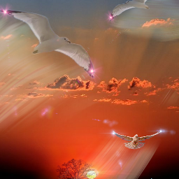 freetoedit jmac pa googleimages sunset