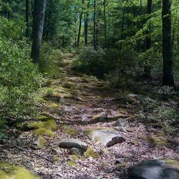 hikingtrail hikingtrails hikingview hikingadventure hiking dpchiking dpcfreetoedit freetoedit