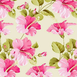 freetoedit wallpaper floral flowers girly