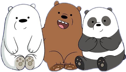 polar panda grizzly bears blackandwhite