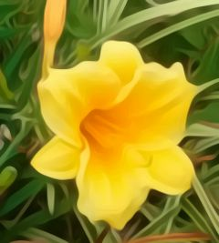freetoedit myphotography flower yellow tennessee
