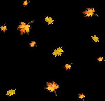 #Autumnleaf #autumn #leaf #halloautumn #deciduous #autumncolors #autumnsticker #tree#freetoedit