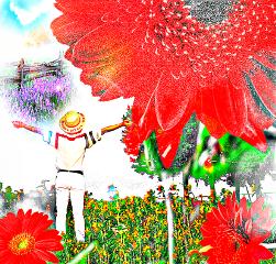 freetoedit dailyremix canvasskyremix lady sunflowers
