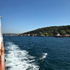 freetoedit sea